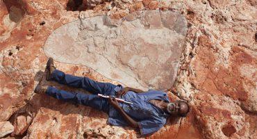 ¡Wow! Fotografían a hombre acostado (junto a la más grande huella de dinosaurio jamás encontrada)