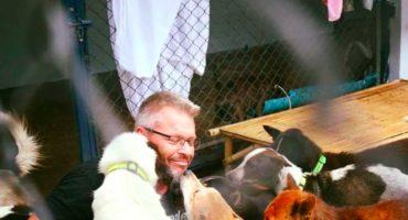 Un tipo ama tanto a los perros callejeros ¡que ahora alimenta a 80 de ellos!