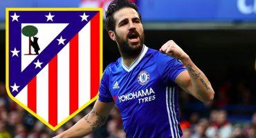 Pese a la sanción, el Atlético de Madrid iría con todo por Cesc Fábregas