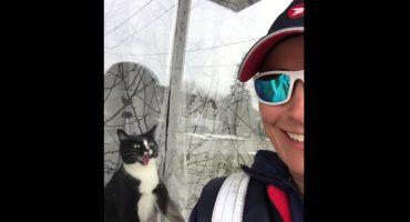 ¿Es este el gato más neurótico del mundo?