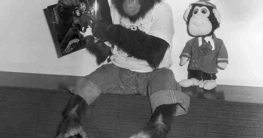 Bubbles - El chimpancé de Michael Jackson