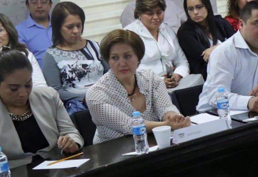 Eva Cadena será investigada por la Fepade