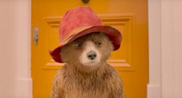 El oso desastroso regresa en Paddington 2