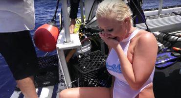 Pornstar atacada por tiburón