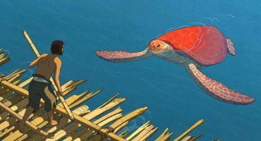 La tortuga roja: entre la naturaleza y la civilización