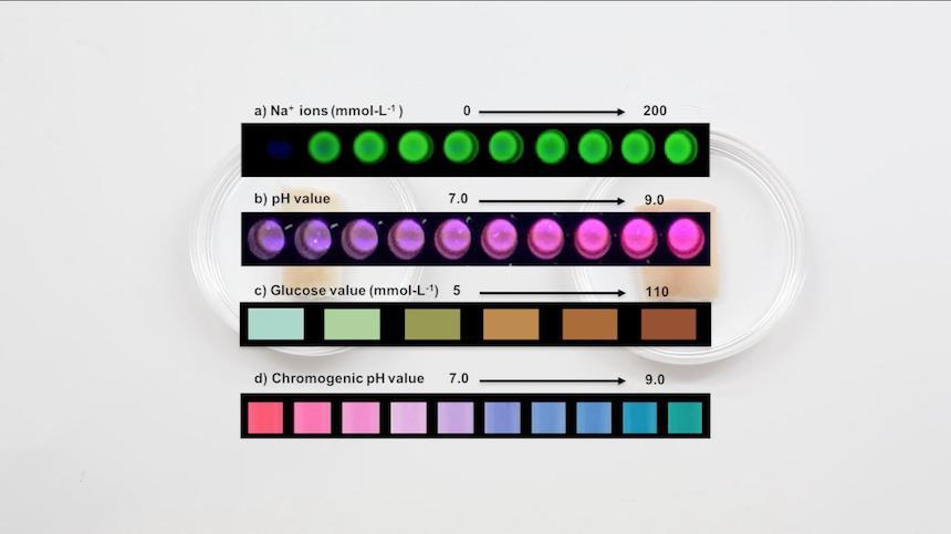 Colores del Dermal Abbys