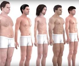 El cuerpo ideal de un hombre en 150 años