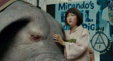 Una niña y su monstruo: Okja