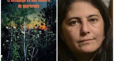 La soledad de las provincias: los relatos de Selva Almada
