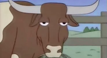Epic Fail: los gringos creen que la leche de chocolate sale de vacas cafés