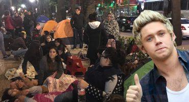 Niall Horan es la explicación de por qué había gente acampando sobre Av. Nuevo León