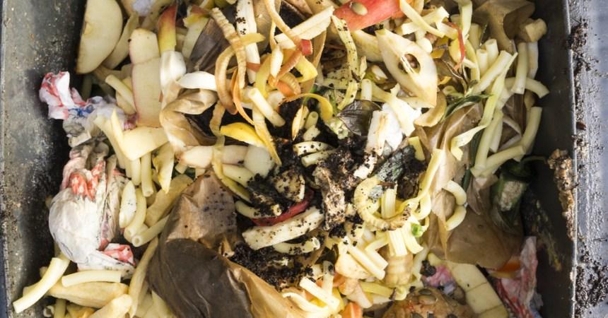 restos de comida en un bote de basura