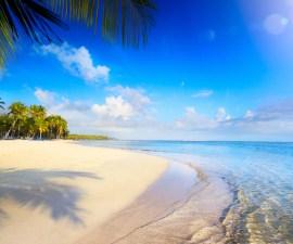 Gastan senadores 2 millones de pesos ¡en Fiji!