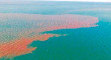 Mancha fecal en aguas de Los Cabos