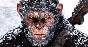 Hasta la vista, simio: El planeta de los simios - La guerra