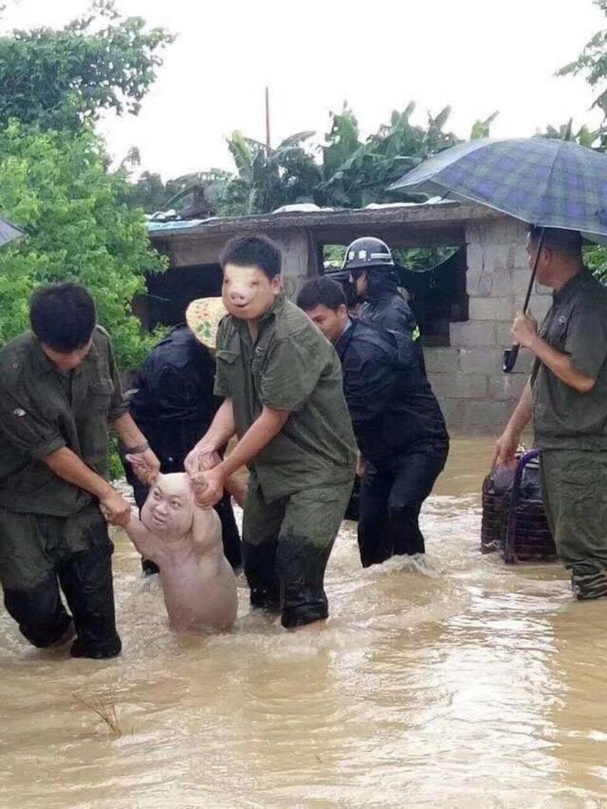 Cerdo de Photoshop - Montaje