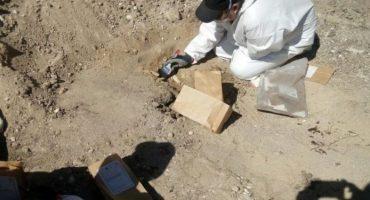 Otra más: Encuentran fosa clandestina con al menos 100 restos en Tijuana