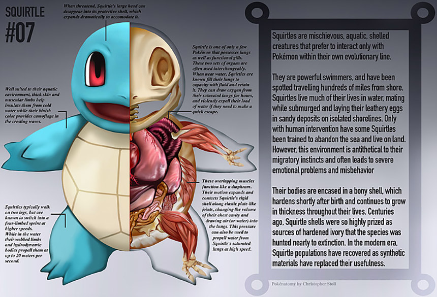 Conviértanse en Maestros Pokémon con este libro de anatomía ...
