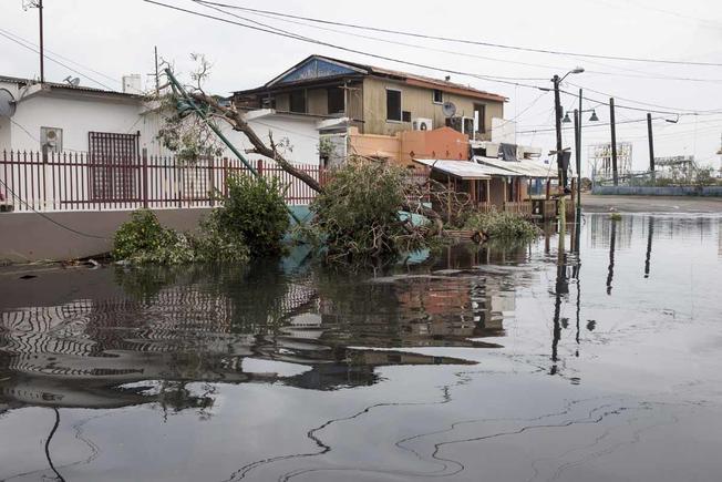 Puerto Rico inindación