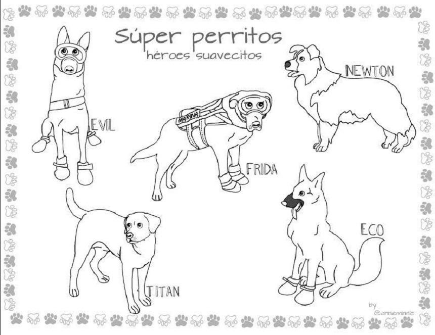 Dibujos Perros Colorear Sopitascom