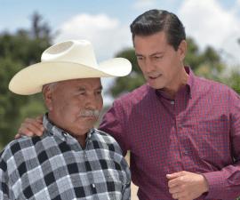 publicidad oficial con Peña Nieto