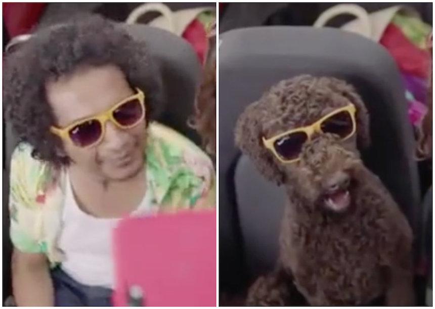 El polémico anuncio en el que Capufe compara a un indigente con un perro