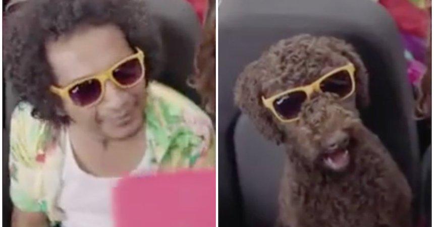 El polémico comercial en el que Capufe compara a un indigente con un perro