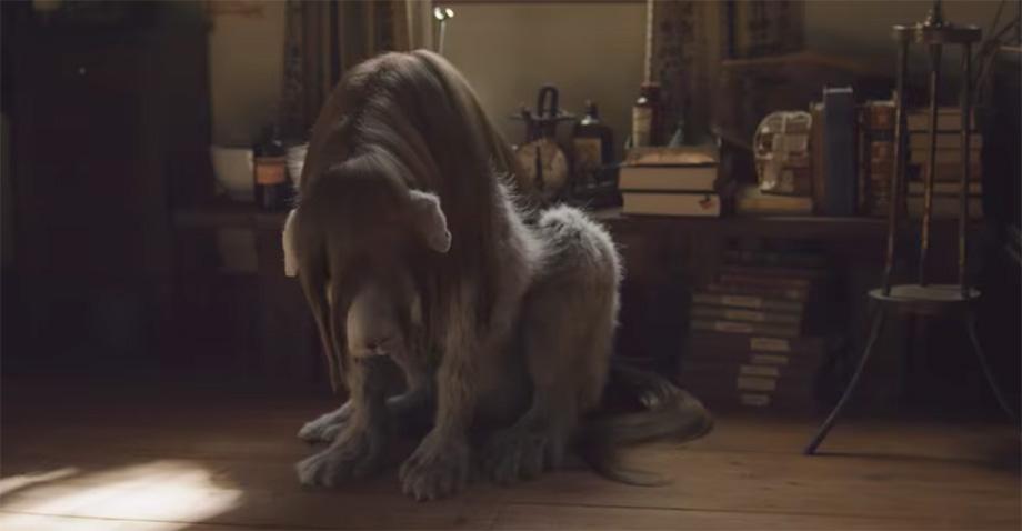 El último trailer de Full Metal Alchemist nos trae un amargo recuerdo