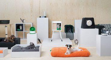 Mueran de ternura con la nueva línea que IKEA lanzó para las mascotas