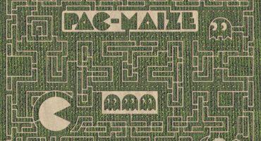 Contemplen el majestuoso laberinto de maíz estilo Pac-Man