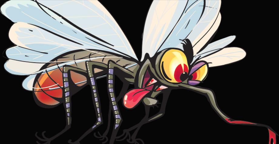 ¿Los mosquitos no te dejan dormir?: estos consejos te serán muy útiles