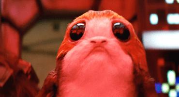 Conoce a los Porgs, tu nuevo personaje favorito de Star Wars