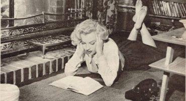 ¿Por qué se rechaza la teoría al hablar de literatura y productos culturales?