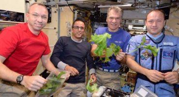 ¡Por fin comida real! Astronautas presumen sus lechugas espaciales