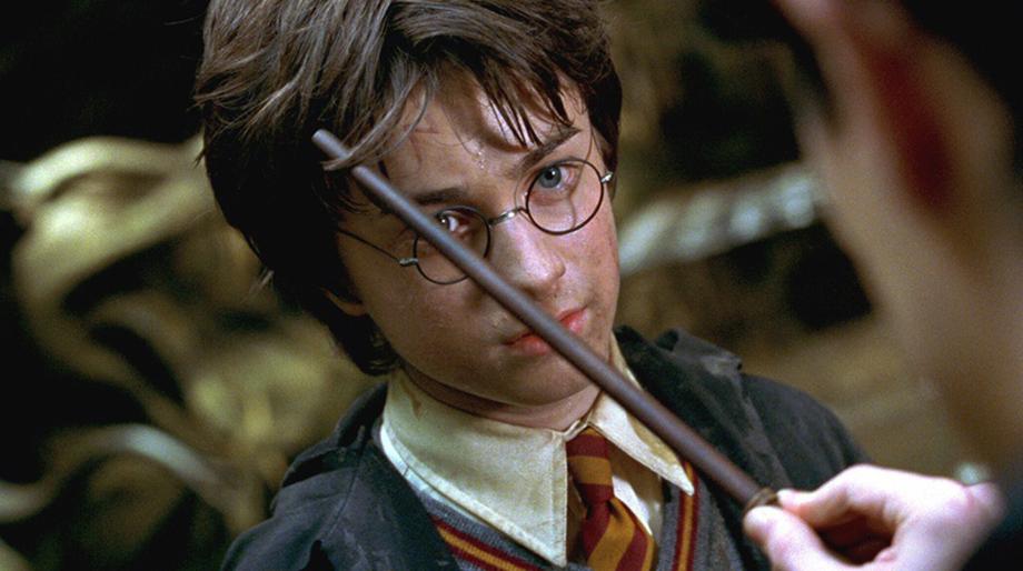 Conoce qué tipo de varita es perfecta para ti con este libro inspirado en Harry Potter