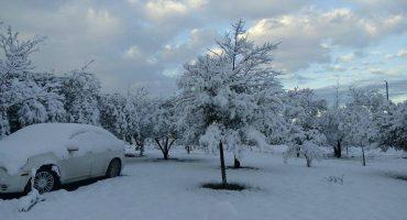 Esta nieve no es de los Alpes Suizos ni de Alaska, ¡es de Torreón, Coahuila!