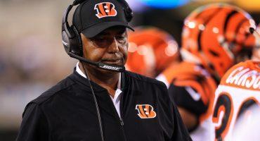 Los Bengals están buscando nuevo head coach