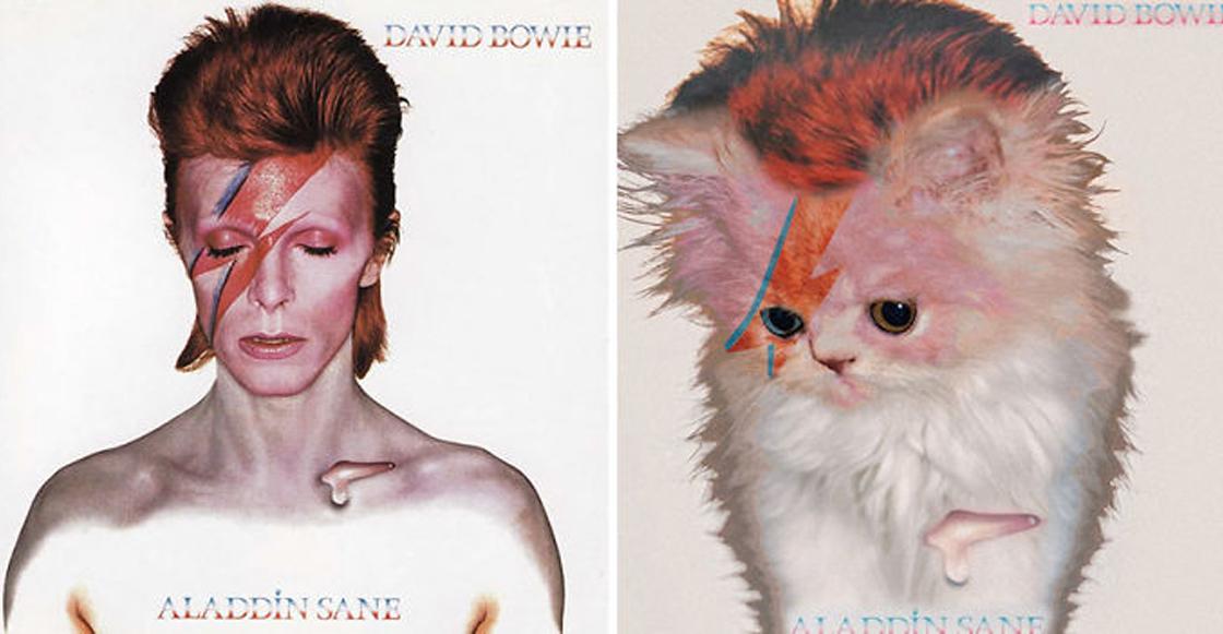 Purriful: ¡Alguien reemplazó con gatitos estas clásicas portadas de discos!