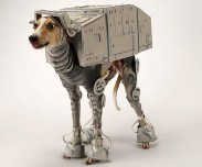 cachorro-star-wars15