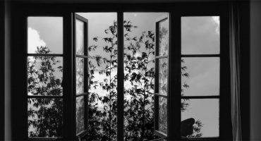 ¡Adiós, Abbas Kiarostami! Mira el tráiler de su último filme '24 frames'