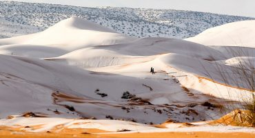 ¿Cuál calentamiento global 'apá? El desierto del Sahara quedó cubierto de nieve