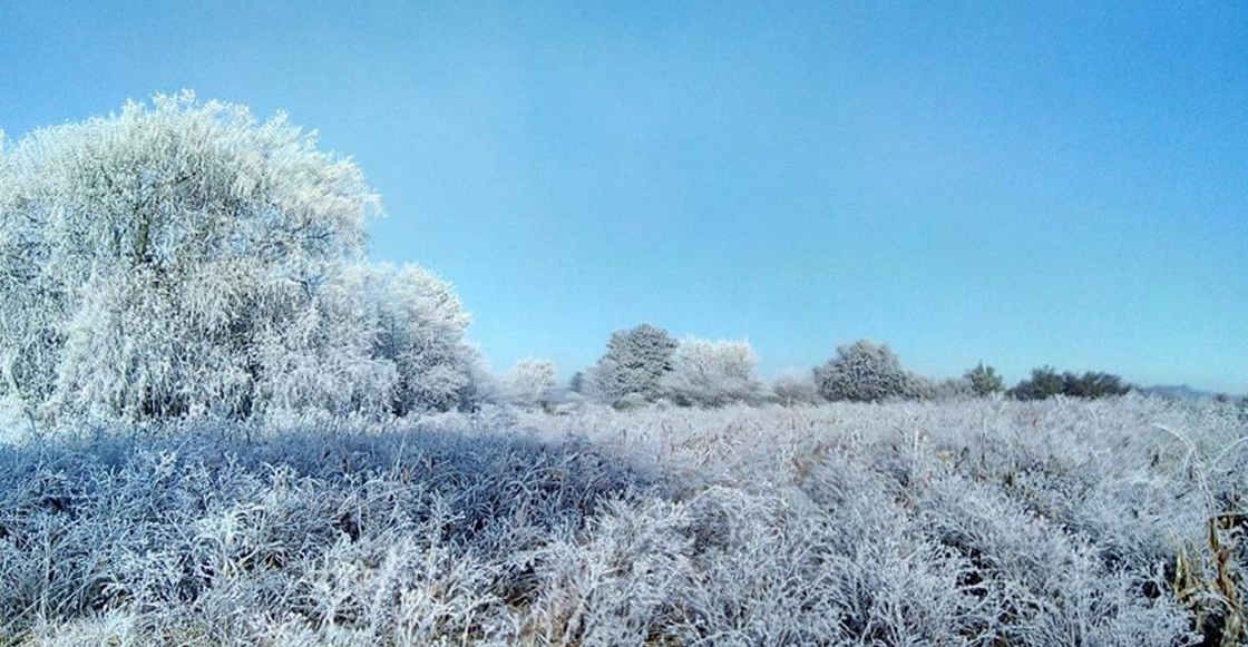 Resultado de imagen para postales frente frio 10
