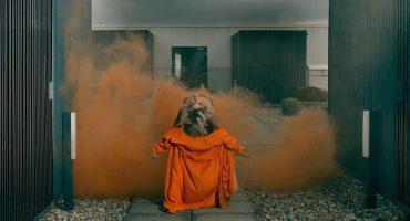 Little Boots muestra el empoderamiento femenino en su nuevo EP, Burn 💅🏻