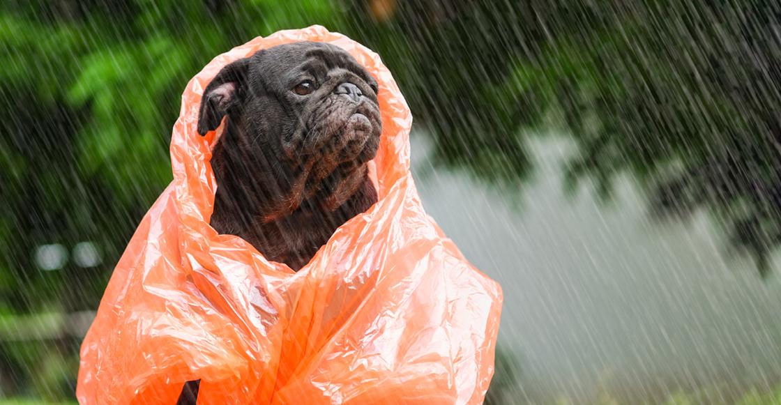 Atento, porque la CDMX espera fuertes lluvias y granizadas