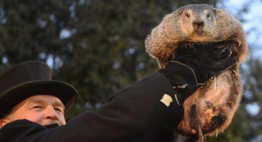 ¡La marmota Phil vio su sombra! Le espera un invierno largo a Estados Unidos