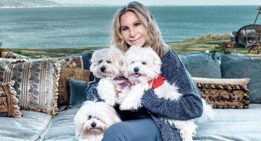 Whaaaat??!! 😳 Barbra Streisand revela que dos de sus perritas fueron clonadas