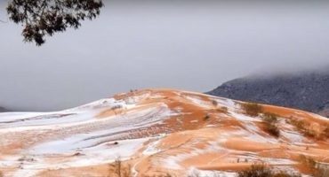 ¿Nieve en el desierto? Así quedó Marruecos luego de la ola de frío