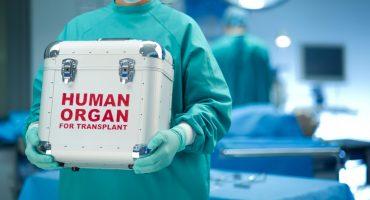 Presentará Morena propuesta para incentivar la donación de órganos
