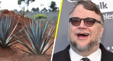 ¿Cuáles son los tesoros de México? Guillermo del Toro te cuenta...