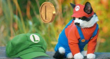 Awww! Este corto recrea la aventura de Super Mario Bros con gatos
